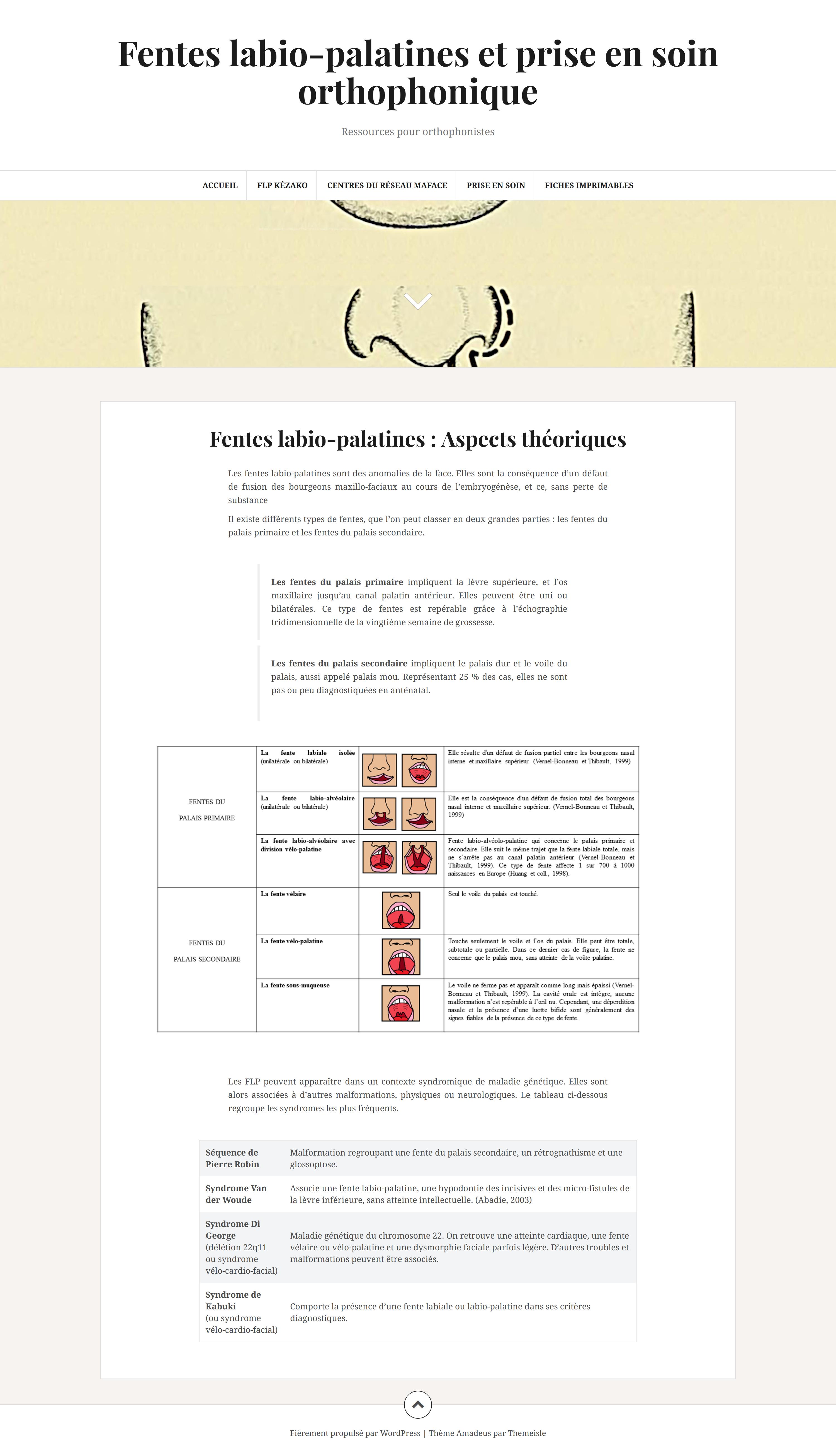 """Website """"Fentes labio-palatines et prise en soin orthophonique"""""""